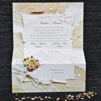 invitatii de nunta 1072__